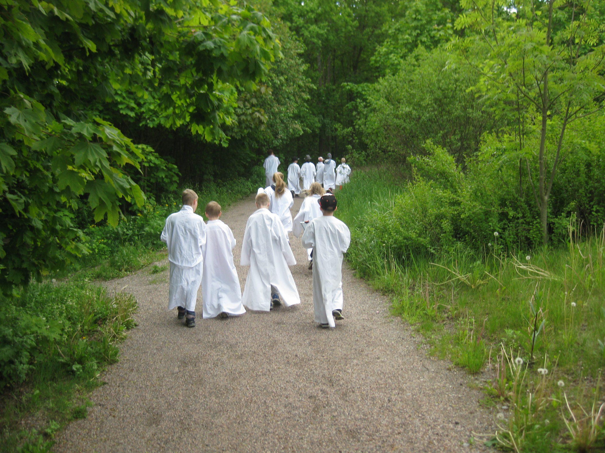 Labratakkeihin pukeutuneita lapsia kävelemässä luonnossa kesäleirillä.